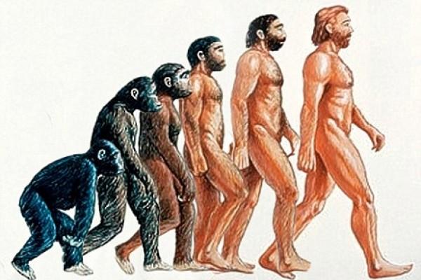 Evolucion_del_hombre[1]